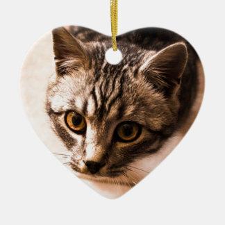 tomcat ceramic ornament