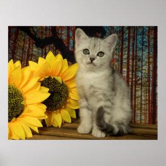 Tomcat SAM autumnal Poster