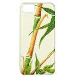 Tome el bambú 1870
