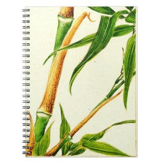 Tome el bambú 1870 libretas espirales