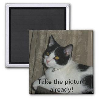 ¡tome la imagen ya! imán cuadrado