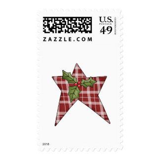 Tomillo del navidad · Estrella y acebo Envio