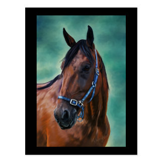 Tommy Standardbred Horse Art Postcard