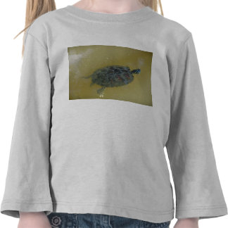 Tommy the turtle tshirt