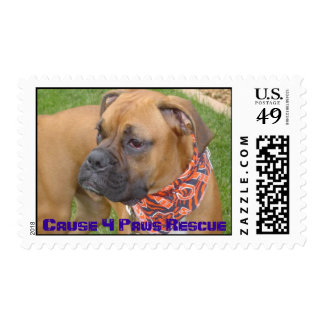 TommyLee1, Cause 4 Paws Rescue Postage