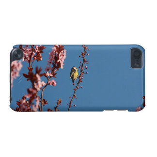 tomtit in blooming cherry plum tree iPod touch 5G case