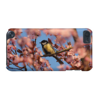 tomtit in blooming tree iPod touch (5th generation) cover
