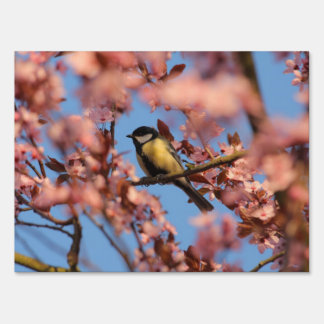 tomtit in blooming tree sign
