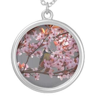 tomtit que se sienta en árbol de ciruelo florecien pendiente personalizado