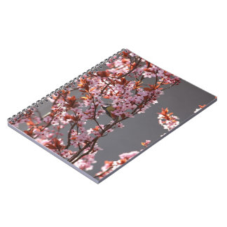 tomtit sitting in blooming cherry plum tree notebook