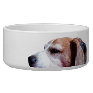 TomTom's Napf Dog Bowls