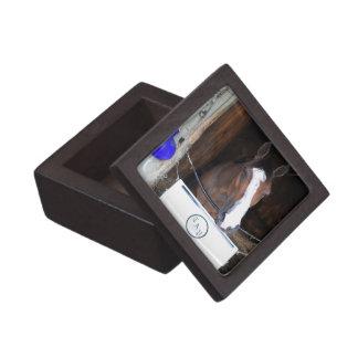 Tonasah Keepsake Box