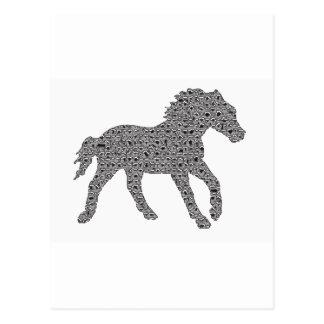 Tones Of Horse Postcard