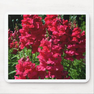 Tones of Red Snapdragons.jpg Mouse Pad