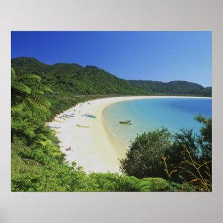 Tonga Bay, Abel Tasman NP, South Island, New Poster