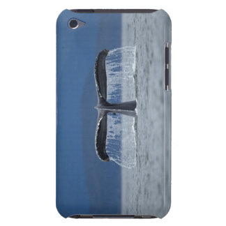 Tongass National Forest, Humpback iPod Touch Case