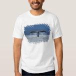 Tongass National Forest, Humpback Shirts
