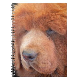 Tongo a Beautiful RedTibetan Mastiff NoteBook