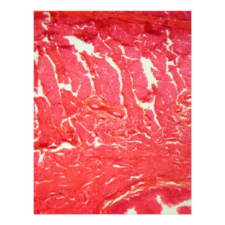 Tongue Cells under the Microscope Letterhead
