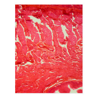 Tongue Cells under the Microscope Postcard