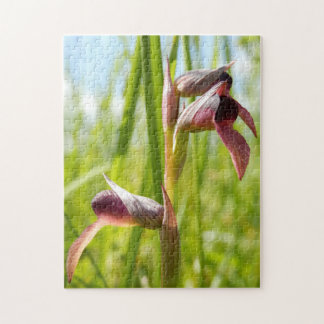 Tongue Orchid Photo Puzzle