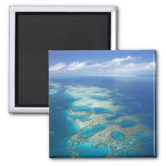 Tongue Reef, Great Barrier Reef Marine Park, 2 Inch Square Magnet
