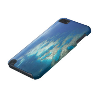 Tongue Reef, Great Barrier Reef Marine Park, iPod Touch 5G Cases