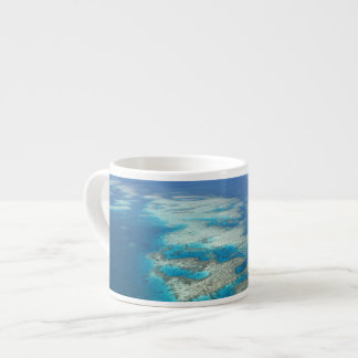 Tongue Reef, Great Barrier Reef Marine Park, Espresso Cup