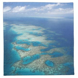 Tongue Reef, Great Barrier Reef Marine Park, Napkin