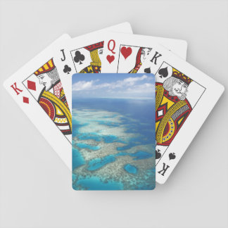 Tongue Reef, Great Barrier Reef Marine Park, Playing Cards