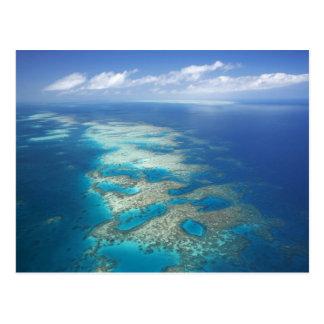 Tongue Reef, Great Barrier Reef Marine Park, Postcard