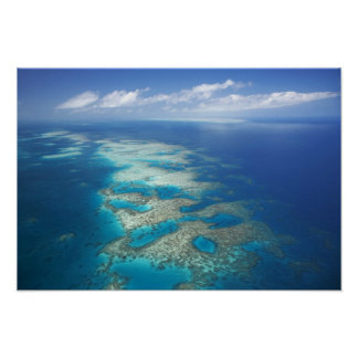 Tongue Reef, Great Barrier Reef Marine Park, Poster