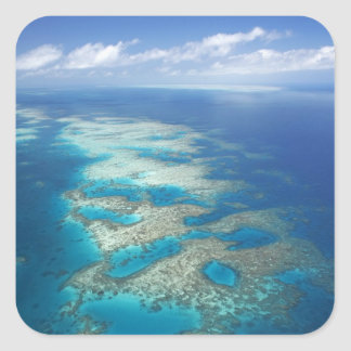 Tongue Reef, Great Barrier Reef Marine Park, Square Sticker