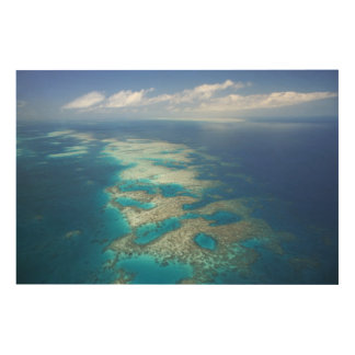 Tongue Reef, Great Barrier Reef Marine Park, Wood Wall Decor