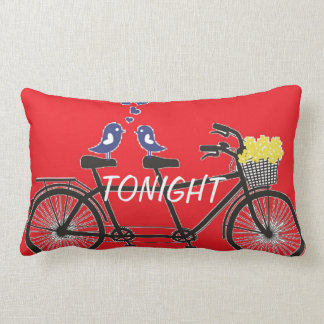 Tonight - Not Tonight - Love birds on bike -Pillow Lumbar Pillow