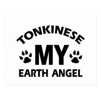 tonkinese cat design postcard