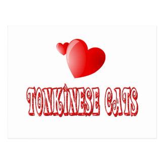 Tonkinese Cat Love Postcard