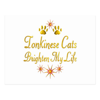 Tonkinese Cats Brighten My Life Postcard