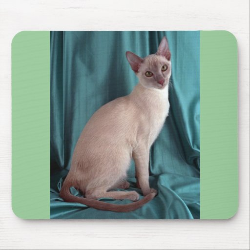 Tonkinese, lilac mouse pad