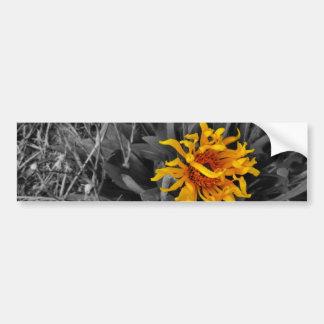 tono amarillo salvaje de la sepia de los pegatina de parachoque