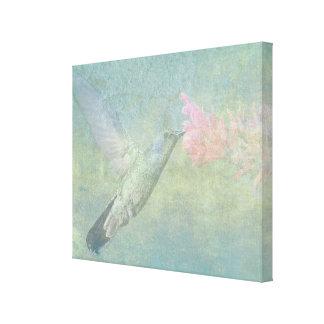 Tono del colibrí lienzo envuelto para galerías