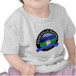 Tonto del Local de Asheville Camisetas