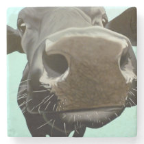 'Too Close For Comfort' Stone Coaster