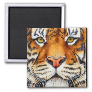 Too Close - Siberian Tiger Magnet