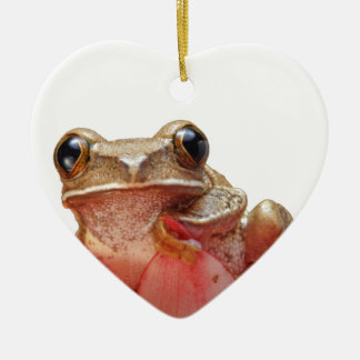 Too Cool Daisy Frog Ceramic Ornament