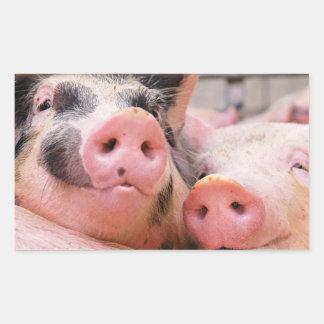 Too Cute Piggies Stickers