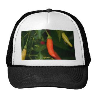 Too Hot To Handle Trucker Hat