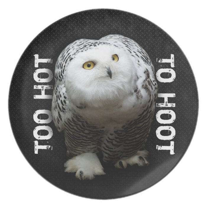 Too Hot To Hoot Dinner Plate