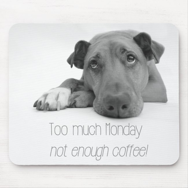 Too much Monday, not enough coffee - Sleepy Dog