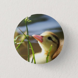 TOO MUCH NICE!!!!!! BUTTON